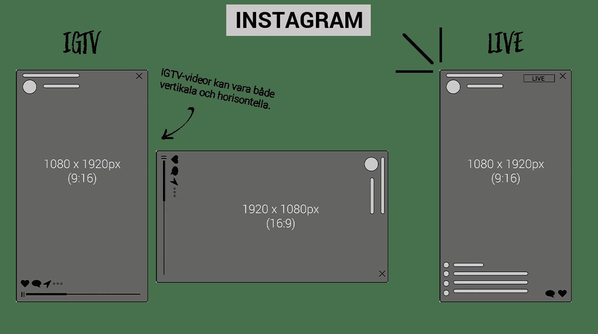 Bildstorlekar Instagram IGTV och LIVE 2019